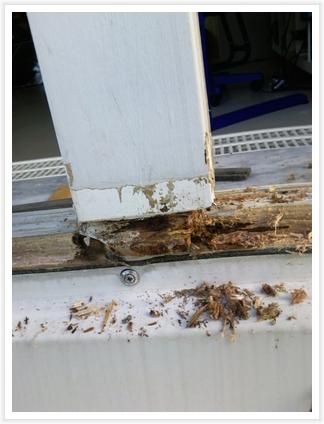 renovierungssystem für holzwintergärten bzw. fenster | traber,